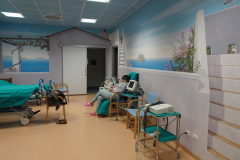 Ostetricia  Ospedale Niguarda- Milano